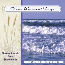 Ocean waves at dawn. CD