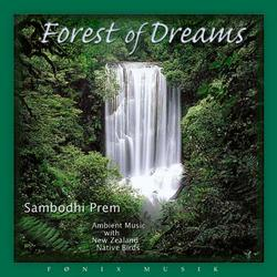 Forest of dreams. CD