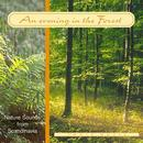 An evening in the forest. CD
